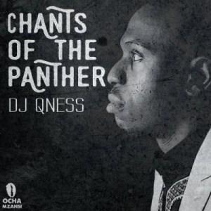 DJ Qness - Chants Of the Panther (Original Mix)